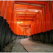 京都 酒造メーカーの海外販路開拓に向けたインフルエンサーの活用例